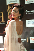 Prajna in Cream Choli transparent Saree Amazing Spicy Pics ~  Exclusive 063.JPG
