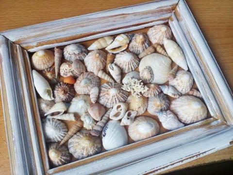 Framed Shell Art DIY Ideas Distressed Shadow Box Frame