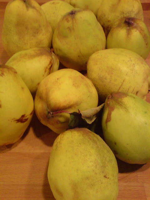 how to make, recipes, quince, paste, jelly,