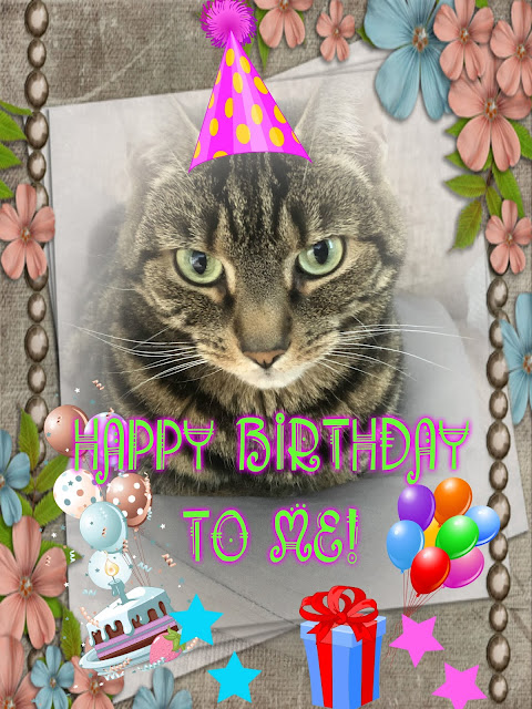 Happy Birthday card for beautiful tabby cat Athena
