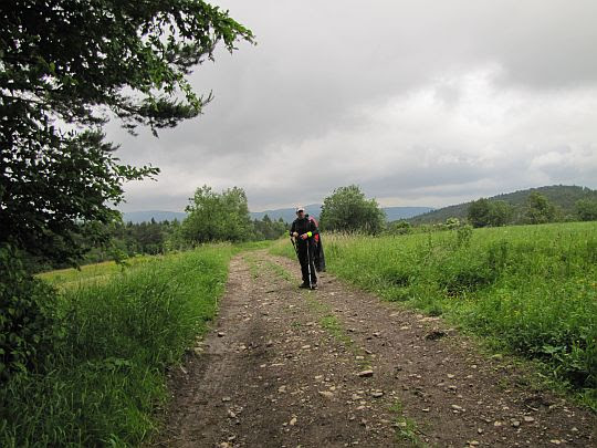 Dalej drogą przez łąki do Puław Górnych.