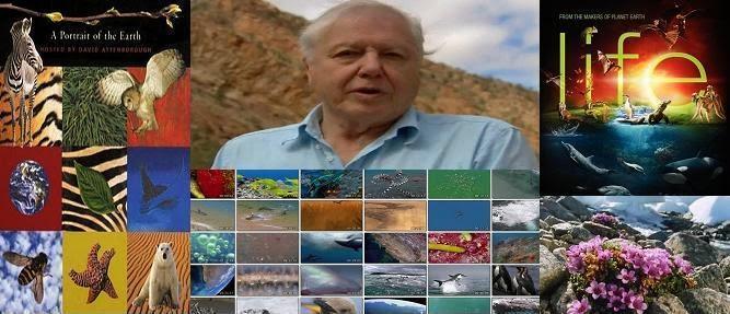 David Attenborough természetfilmjei