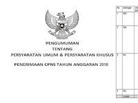 Seleksi CPNS 2018 Formasi Guru dan Umum Dibuka Pada Akhir Bulan.....