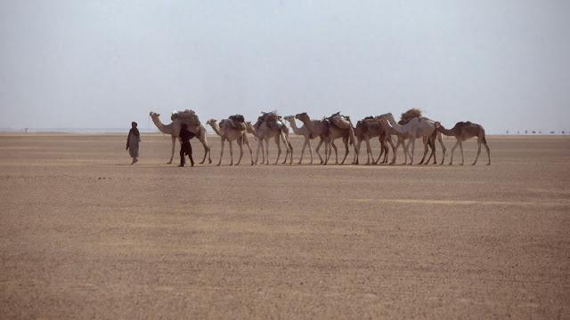KarawaneSahara1991 - Estudo sugere que Deserto do Saara surgiu devido ação humana