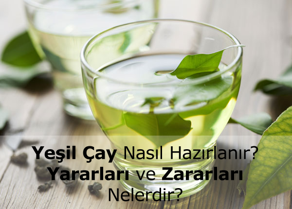 Yeşil Çay Nasıl Hazırlanır?