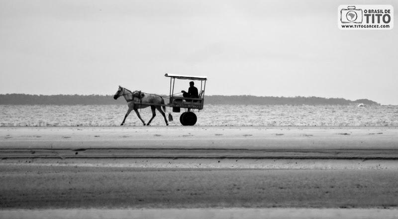 Carroça na praia da Caixa d'água, na vila do Algodoal, na ilha de Maiandeua, no Pará