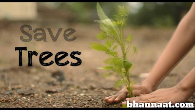 Benefits of Trees in Hindi and Unknown Facts