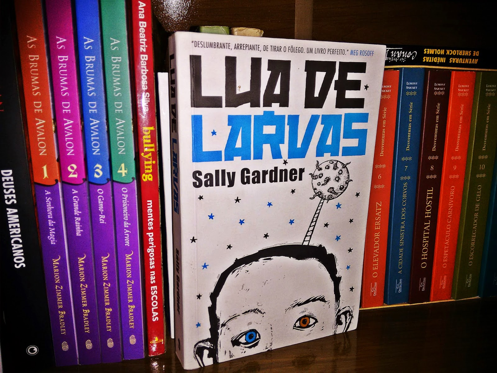 foto1 - Lua de Larvas - Sally Garner