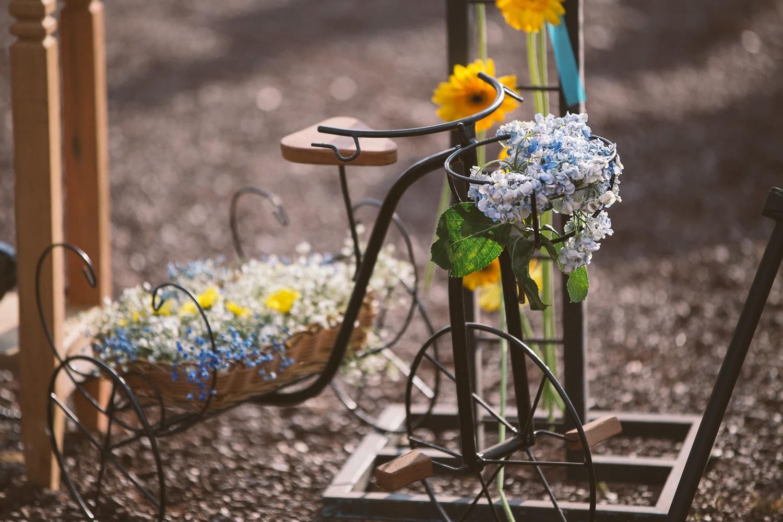 cerimonia-serra-rola-moca-bicicleta