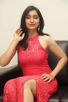Sakshi Kakkar in Red Legsplit Sleeveless Gown at Dare movie Press meet ~  Exclusive 087.JPG