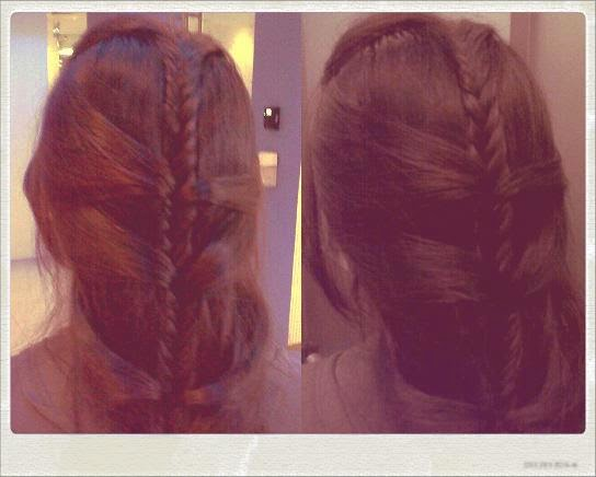 Fishtail Braid with Ladder