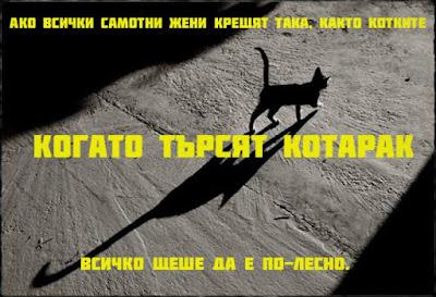 Ако всички самотни жени крещят така, както котките когато търсят котарак, всичко щеше да е по-лесно!