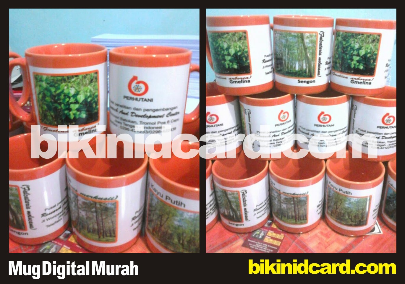 cetak mug digital murah full warna