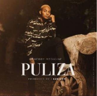 Puliza