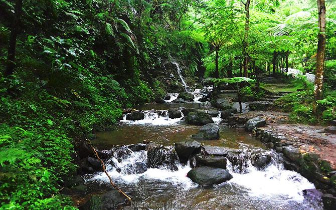 Aliran sungai kecil dari air terjun Jumog
