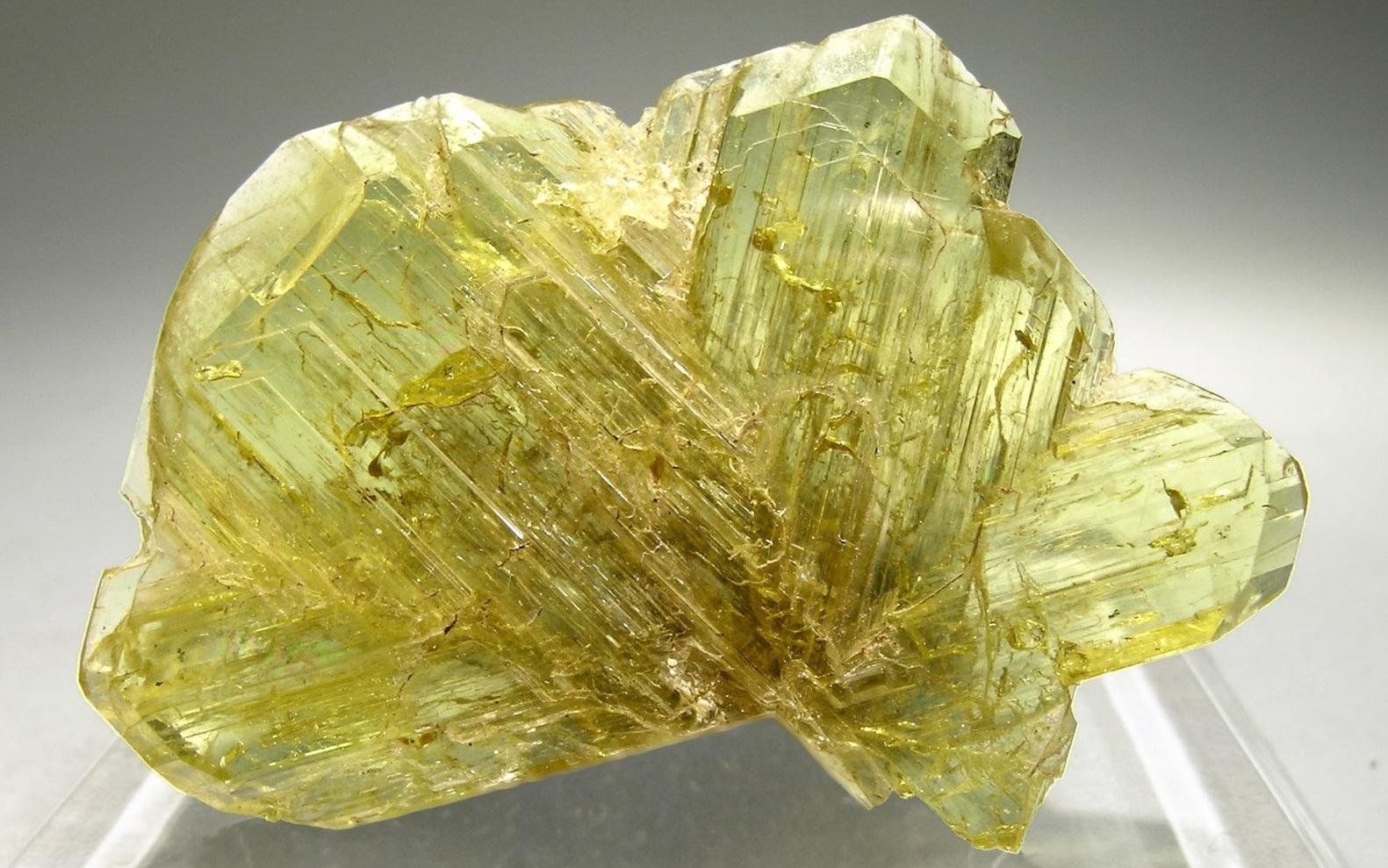 Brillante Piedra