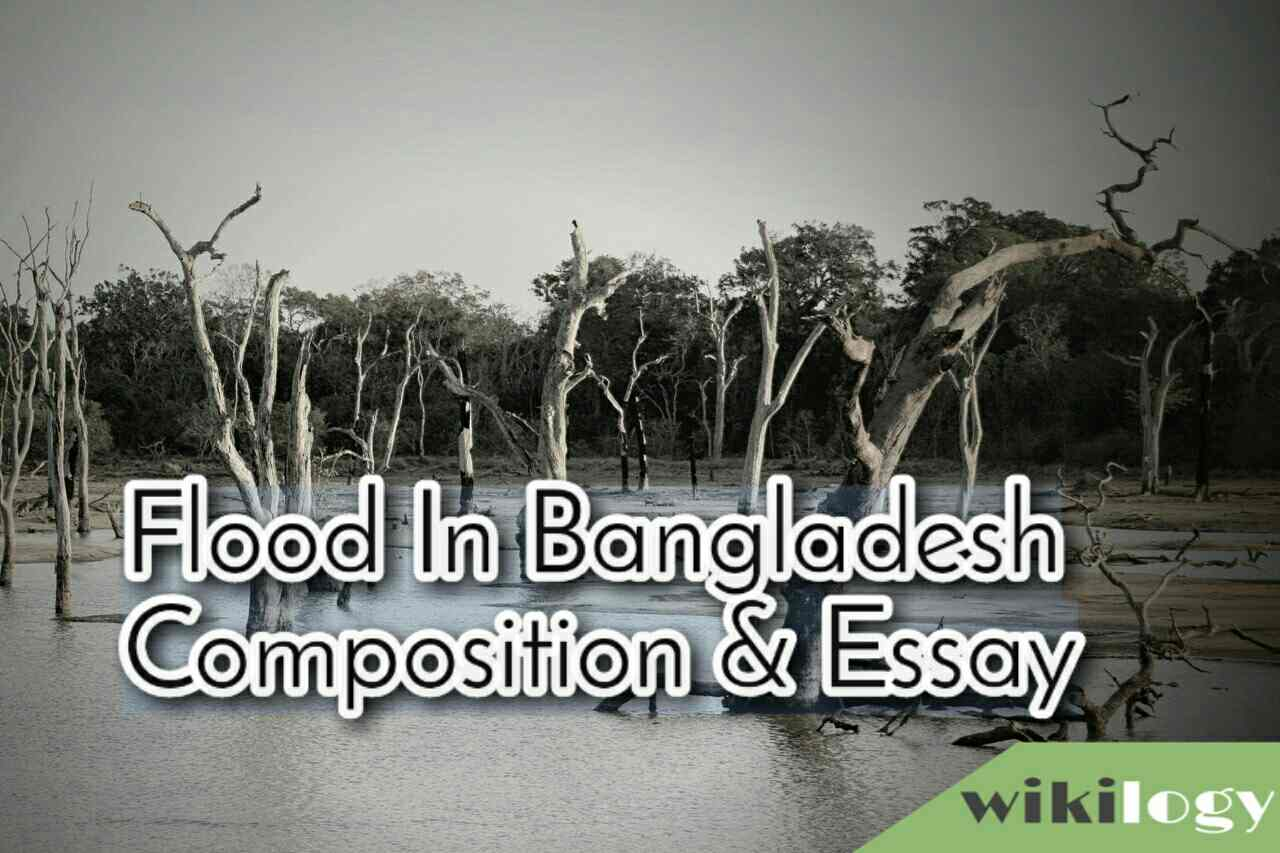 Flood in Bangladesh Composition & Essay/ The Recent Flood