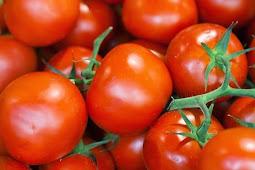 Apa Saja Manfaat Tomat Bagi Tubuh Manusia?