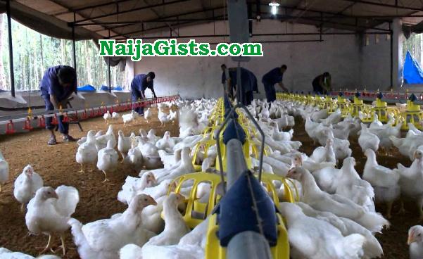 poultry farmer kidnapped ikorodu lagos