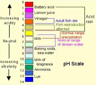pH of different liquids