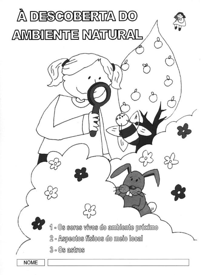 ATIVIDADES DE CIÊNCIAS SOBRE PLANTAS, MEIO LOCAL E ASTROS.