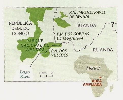 gorilas-congo