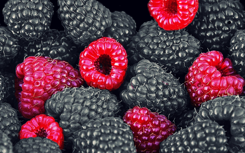 Blackberry fruit wallpaper - Wallpaper Blackberries And Raspberries