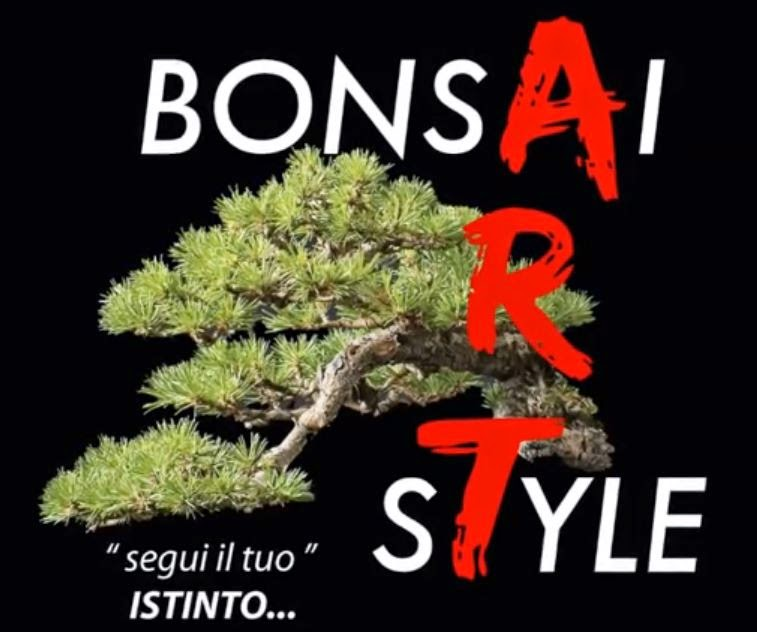 http://evoluzionebonsai.blogspot.it/2015/03/davide-cardin-bonsai-di-olmo-ulmus_18.html