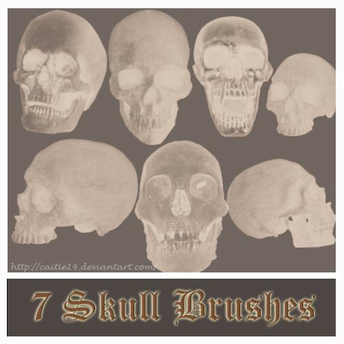 7 Skull Brushes
