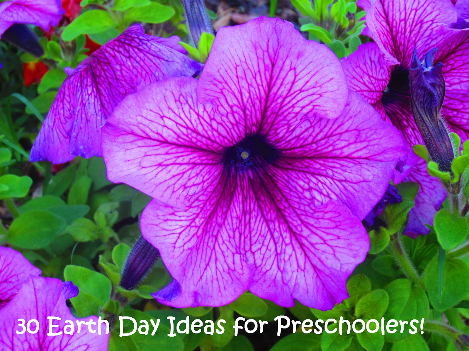 30 Earth Day Ideas For Preschoolers