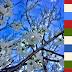 Ευχετήρια κάρτα Δήμου Μυκόνου - Πάσχα 2017