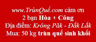 Trùn quế Krông Pắk