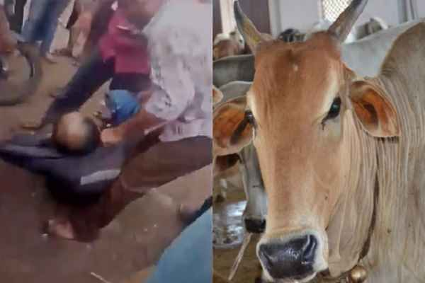 nagpur-gaurakshak-beaten-a-man-for-carrying-gau-mans