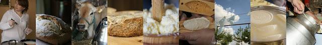Przepis na ser domowy