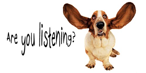 Learning To Listen Dog Training Video