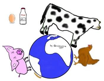 Disegno del pianeta le cui terre emerse sono occupate per lo più da manzo-maiale-pollo, mentre gli insetti occupano poco spazio (by sciencemug)