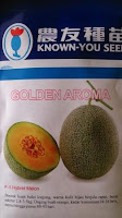 benih melon, melon golden aroma, golden aroma, benih melon golden aroma