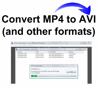 Convert MP4 to AVI and other formats