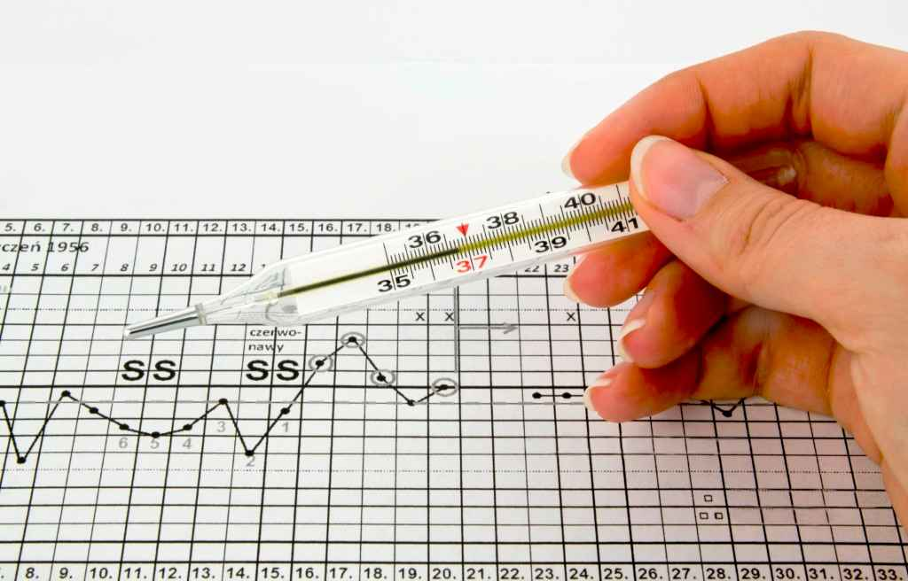 Gráfico de temperatura corporal basal (TCB) - tudo que você precisa saber
