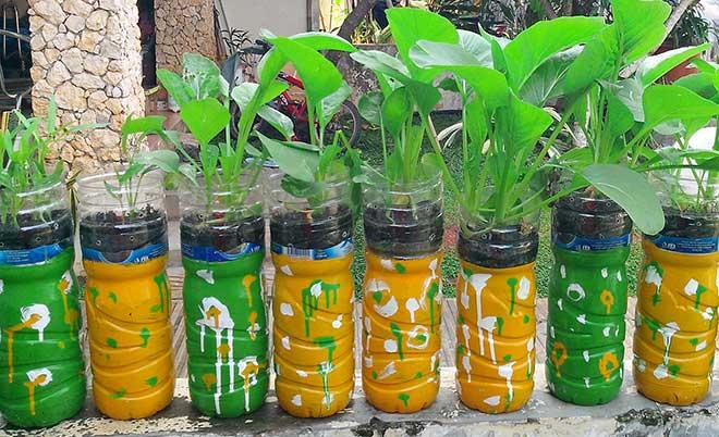 Berita TV Malaysia Cara Menanam Sayuran Hidroponik