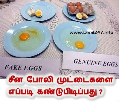 china fake eggs, poli muttai kandupidikkum murai, plastic eggs in india, போலி முட்டை