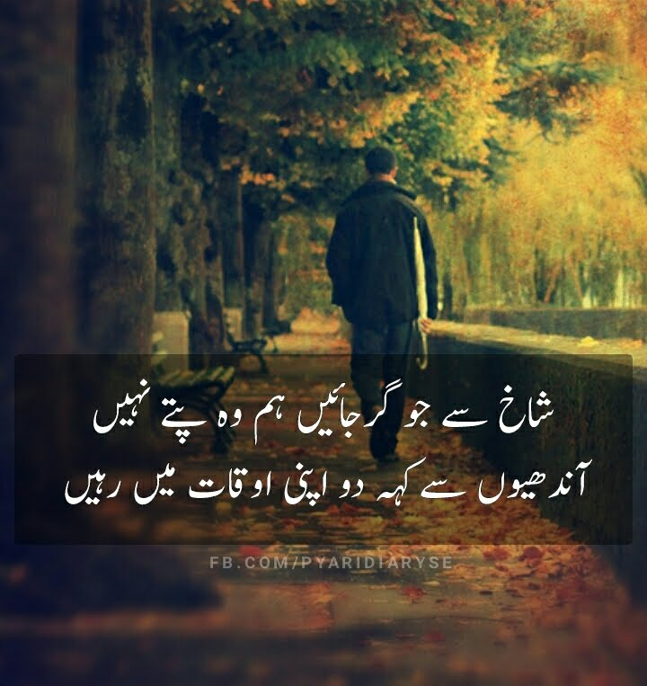 Attitude Urdu Poetry & Status - Andhiyon Se