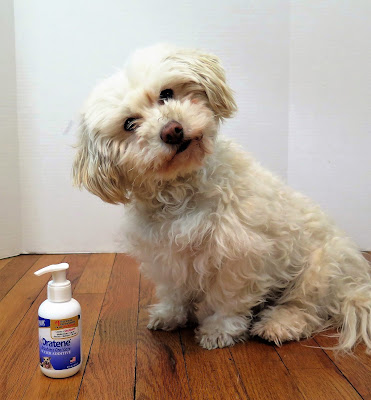 Oratene Water Additive provides brushless oral health care for pets