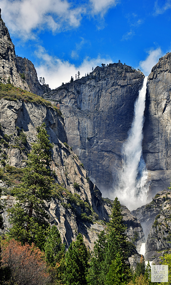 The Secret to Seeing Yosemite in a Day | by Life Tastes Good