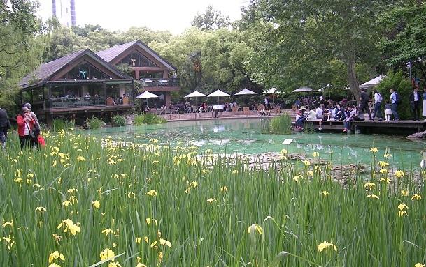 池の畔にあるコッテージのようなレストラン…人集りがある