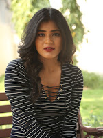 Hebah Patel sizzling at Nanna Nenu Naa Boyfriends-cover-photo