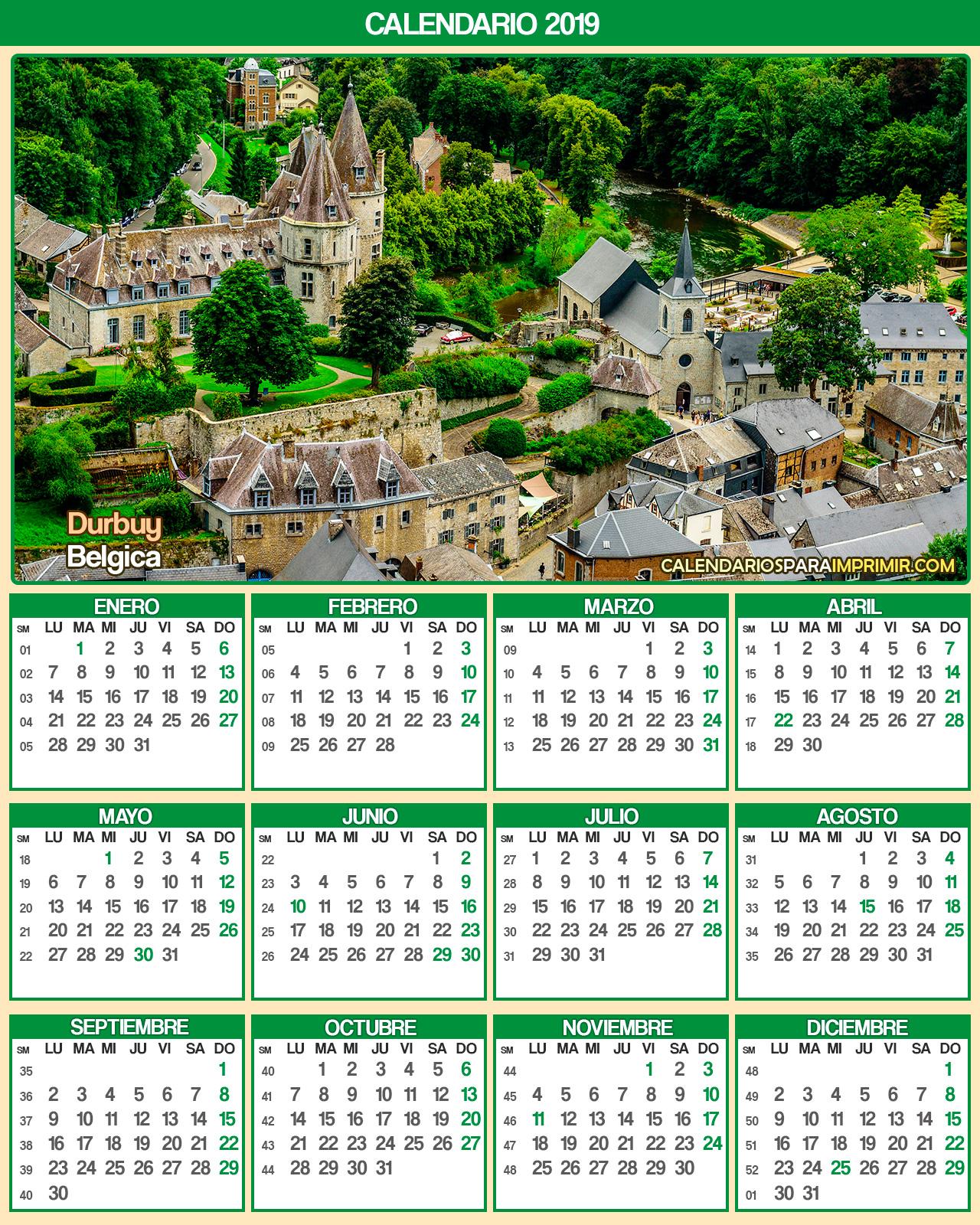 calendario belgica 2019