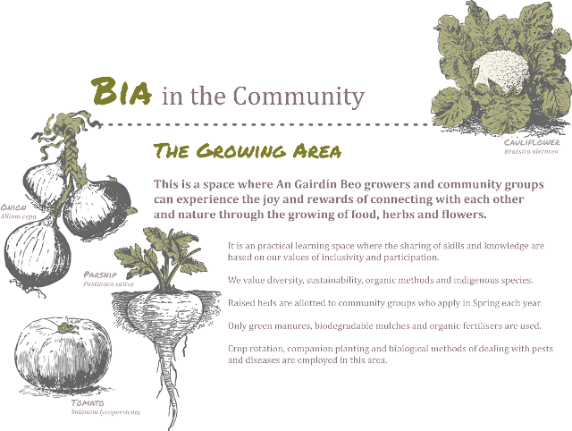 Bia in the Community - Full Image
