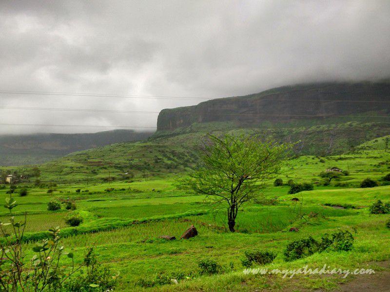 Monsoon magic of the western ghats on the Trimbakeshwar -Ghoti road near Nashik, Maharashtra