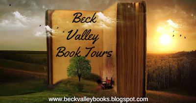 beck valley tour banner